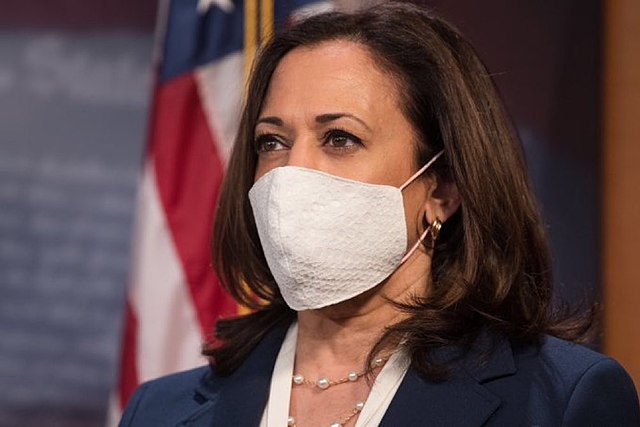 Will Democratic Voters Make Harris Pay for Caving on the Minimum Wage? Don't Count OnIt
